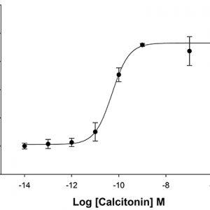 HiTSeeker Calcitonin Receptor Cell Line