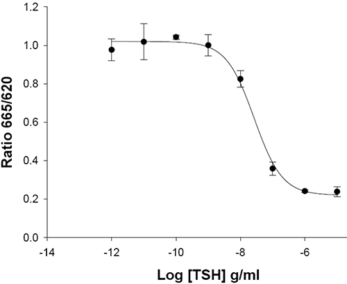 TSH Receptor Cell Line