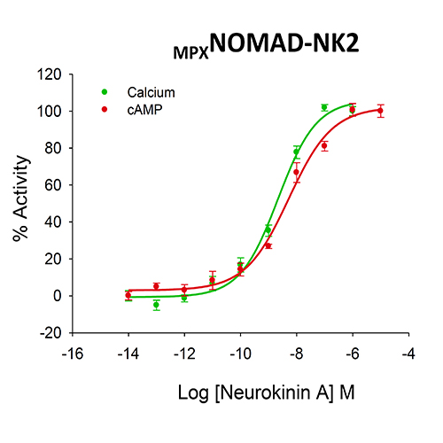 NOMAD NK2 Tachykinin Receptor Cell Line
